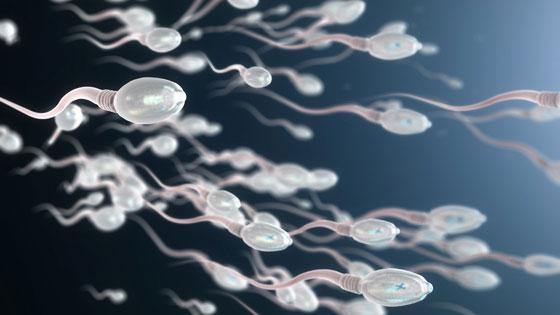 Bercinta Tanpa Kontrasepsi Saat Menstruasi, Apakah Bisa Hamil?