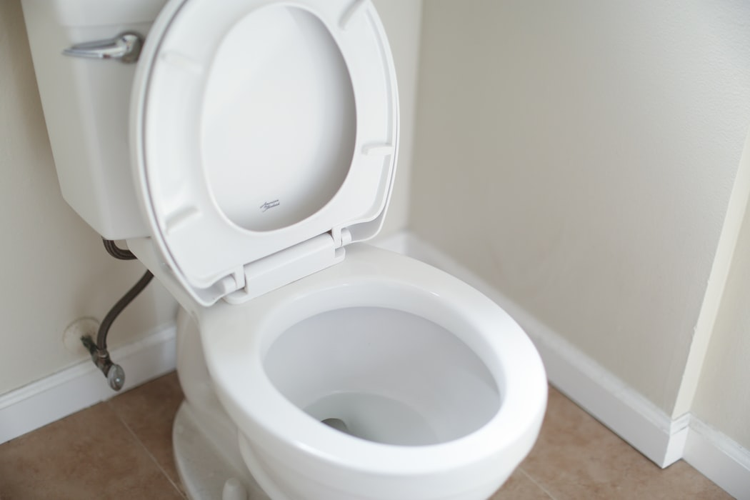 Infeksi menular seksual toilet
